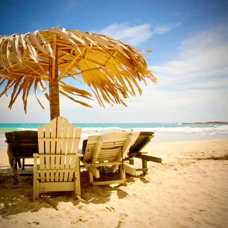 A nice area with chairs and tree parasol infront the ocean