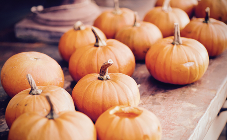 Many pumpkins gathered on a wooden table Stock Photo