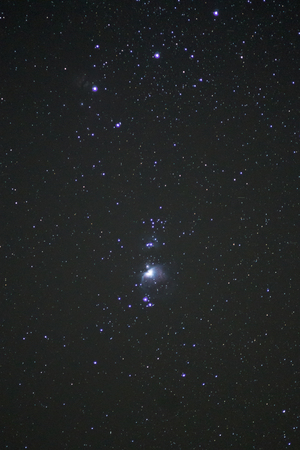 orion: Lower part of constellation Orion Tai Po Hong Kong China 31Dec2013 Stock Photo