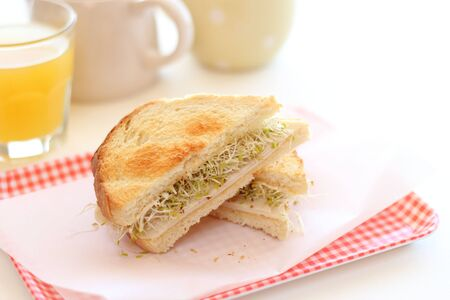 Toasted sandwich with Alfalfa and chicken ham