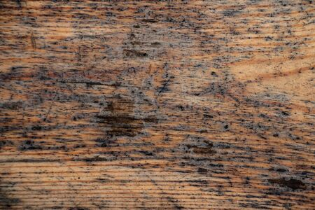 wood texture background, solid wood, brown, place for text