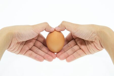 women hands with egg  photo