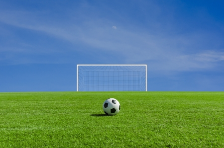 Soccer ball on the green field photo