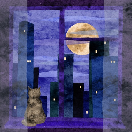 urban cat 版權商用圖片