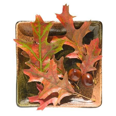 plateful: plateful of autumn Stock Photo