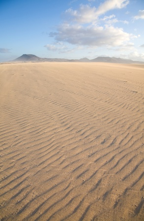 Fuerteventura, Corralejo sand dunes nature park photo