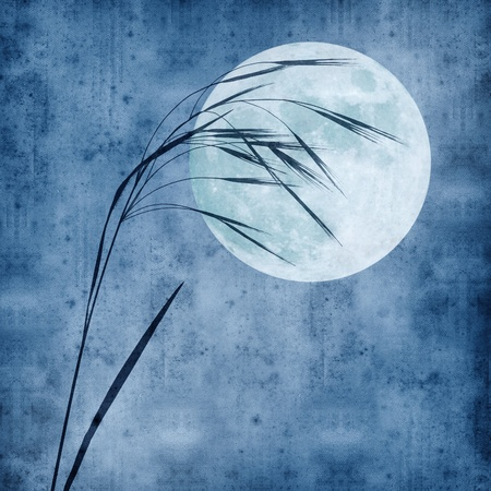 old moon: old paper background with grass stalk and full moon Stock Photo
