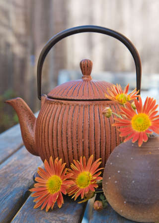 autumn tea with traditional japanese cast iron teapot Stock Photo - 11308630