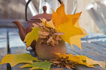 tetsubin: autumn tea with traditional japanese cast iron teapot
