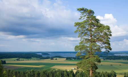 horticultural: central Finland, Horticultural landscape with lake in the distance, shot from above Stock Photo