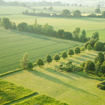 tidy square - view over the early summer green fields from the air; East Anglia; UK