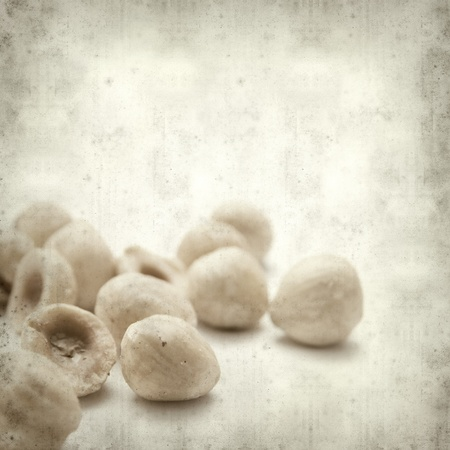 shelled: textured old paper background with shelled huzelnuts