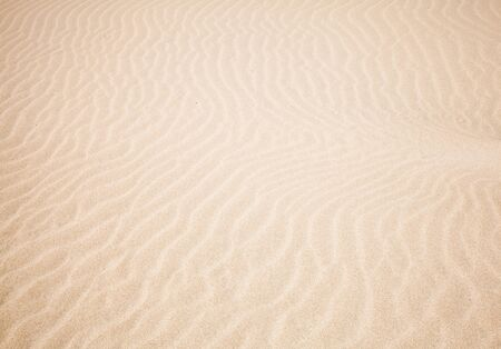 wind and sand pattern of a surface of a dune Stock Photo - 13883040