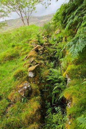 distant spot: scottish summer landscape with little stream Stock Photo