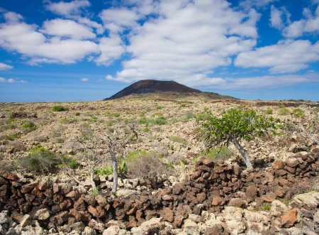 Inland Northern Fuerteventura, natural monument Malpais de la Arena Stock Photo - 16758524