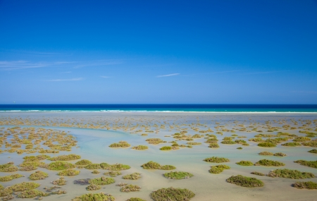 sandbank: Fuerteventura, Playa De Sotavento on Jandia peninsula, salt water lagoon protected from the open ocean by a sandbank Stock Photo