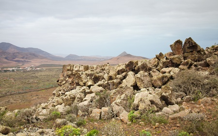 Northern Fuerteventura, Canary Islands, view south from Montana de Arena, rock formations covered with lichens photo