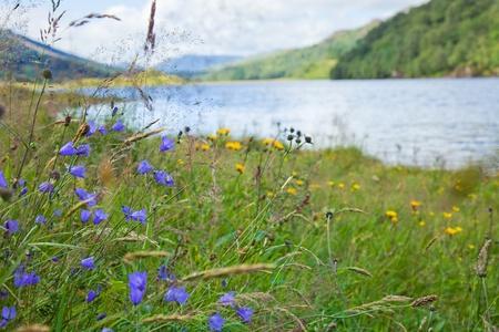 scottish landscape with lake Stock Photo - 19534732