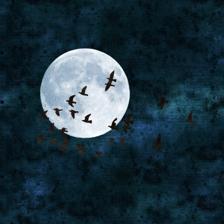 mistic: full moon collage with paper texture, pigeons flying