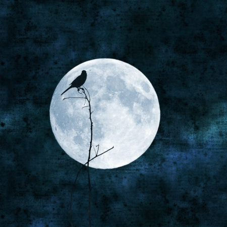 mistic: full moon collage with paper texture, shrike bird on a branch Stock Photo