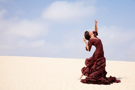 flamenco en las dunas photo