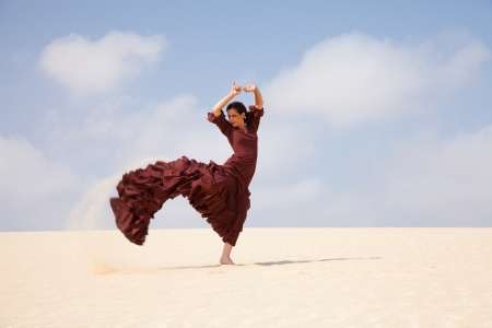 flamenco in the dunes Stock Photo
