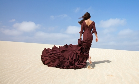 flamenco in the dunes photo