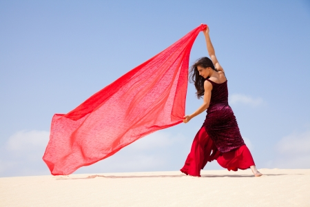 svelte: flamenco in the dunes Stock Photo