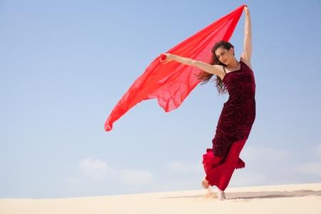 flamenco in the dunes Standard-Bild