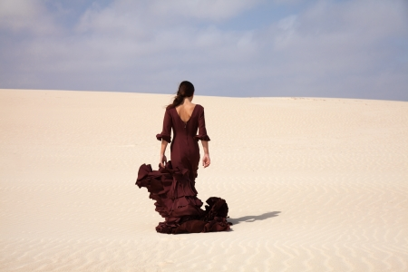 flamenco dancer: Flamenco dancer in the long dress in the dunes