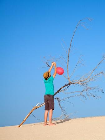 semblance: balloons in the desert - dead tree