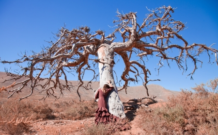 dead tree: flamenco and a dead tree, art, life and death Stock Photo