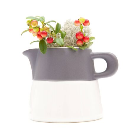 forest arrangement - moss and berries in a small milk jug photo