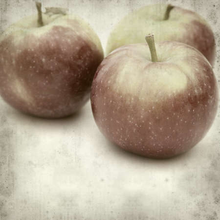 textured old paper background with apples photo