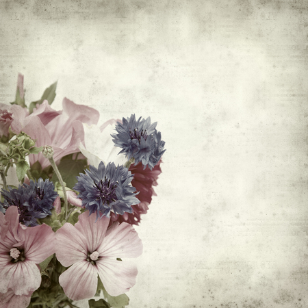 textured old paper background with autumnal posy photo