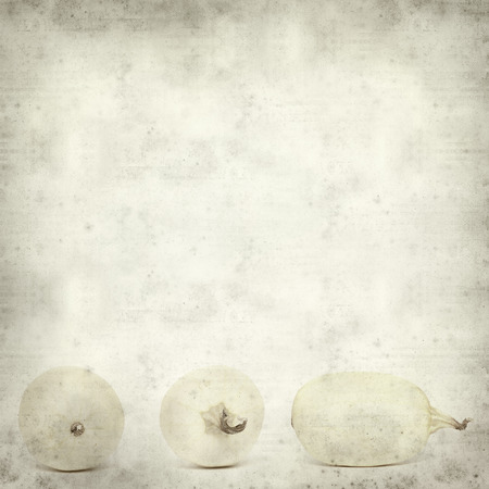 textured old paper background with squash photo