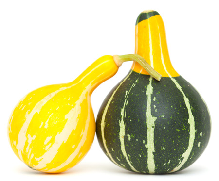 drunken gourds - two ornamental gourds posing, supporting each other photo