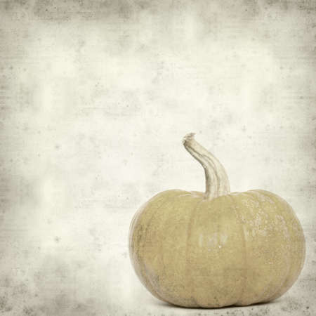 textured old paper background with gourd photo