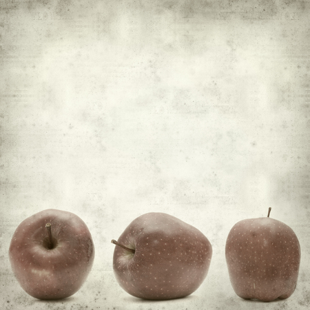 textured old paper background with red apple photo