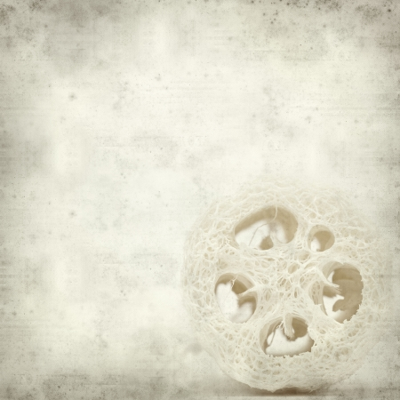 textured old paper background with loofah sponge photo