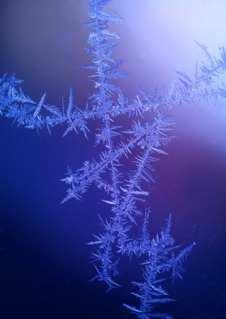 fractality: beautiful frost pattern on window - thunderbolt shape