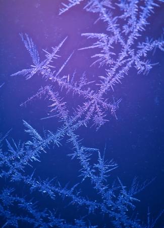 fractality: beautiful frost pattern on window