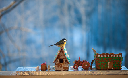 small birds are feeding on the remains of gingerbread village, winter setup photo
