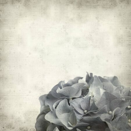 textured old paper background with  photo