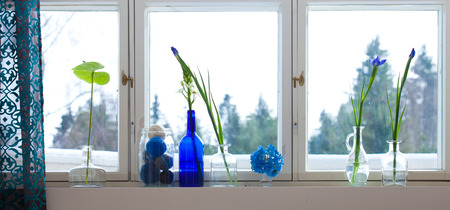 spring windowsill with knitting preserve photo