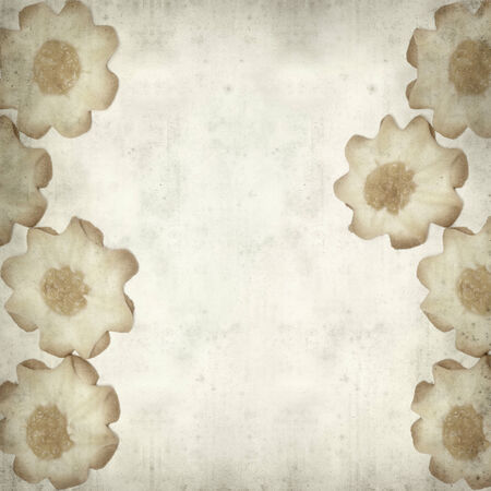 colorific: textured old paper background with shortbread biscuits