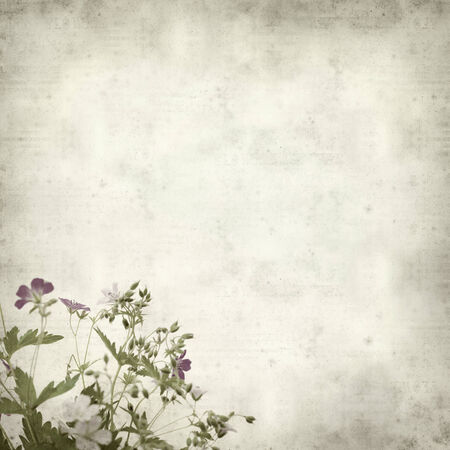 textured old paper background with wild flower bouquet photo