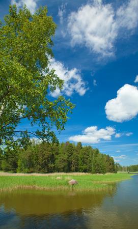 Finnish summer landscape,, sunny day Stock fotó