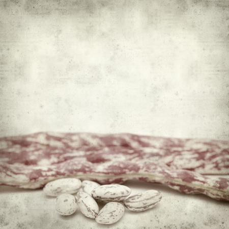 textured old paper background with beans Stock Photo - 29547467