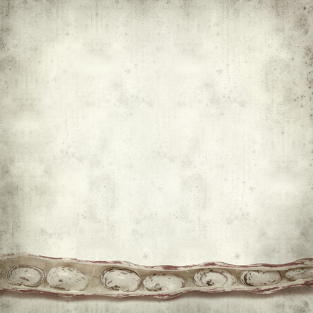 textured old paper background with beans Stock Photo - 29547476